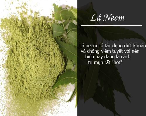 Cách trị mụn trứng cá hiệu quả nhanh nhất chỉ trong 3 ngày - trị mụn bằng lá neem