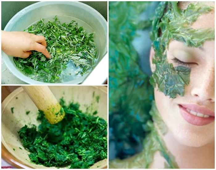 Đắp mặt nạ lá ngải cứu trị được mụn không ? 4