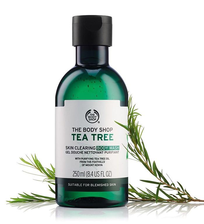 Sữa tắm trị mụn lưng The Body shop tea tree